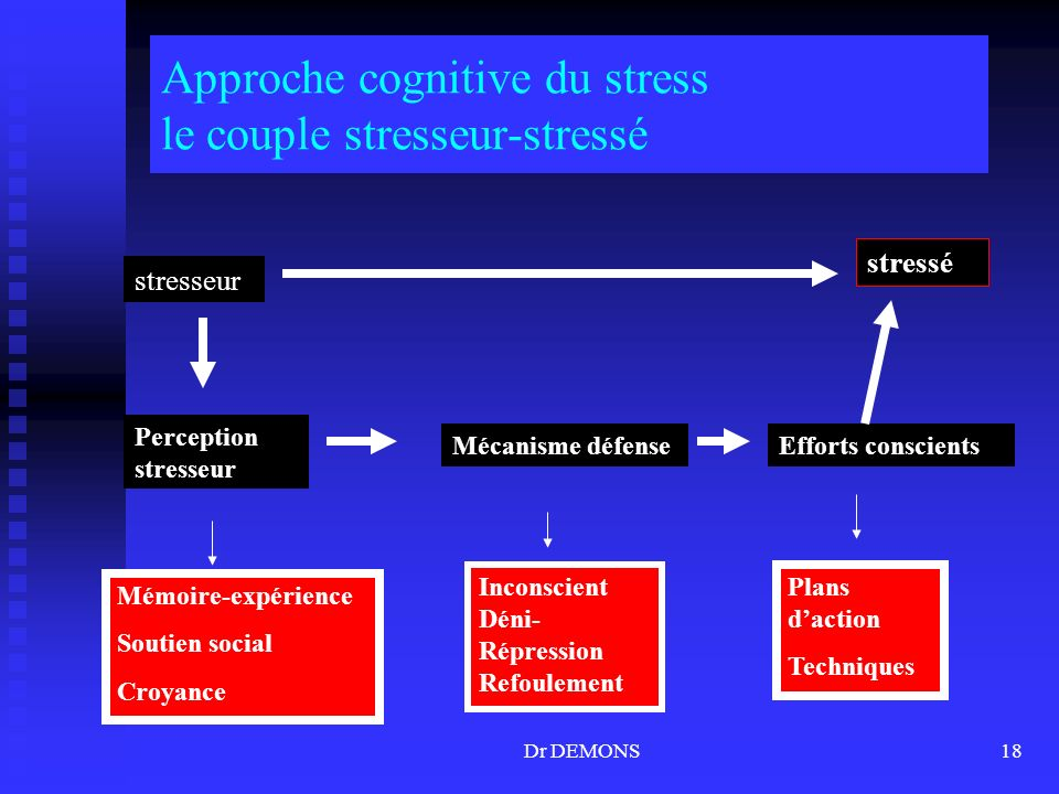 Dr DEMONS18 Approche cognitive du stress le couple stresseur-stressé stresseur Perception stresseur Mécanisme défenseEfforts conscients stressé Mémoir
