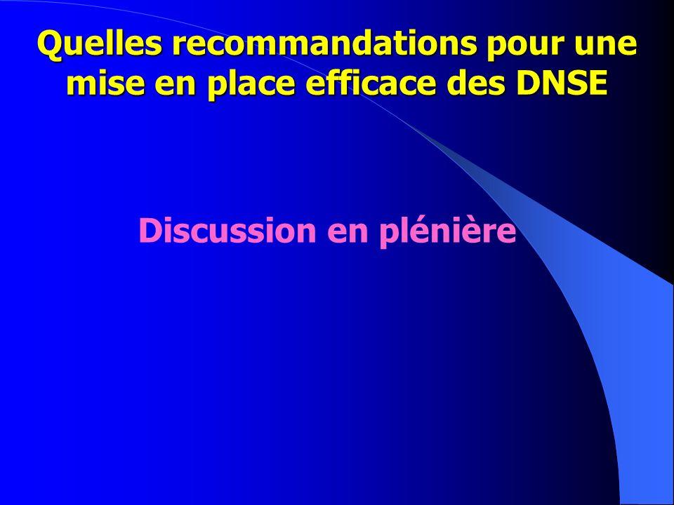 Quelles recommandations pour une mise en place efficace des DNSE Discussion en plénière