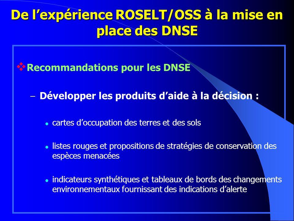 De lexpérience ROSELT/OSS à la mise en place des DNSE Recommandations pour les DNSE – Développer les produits daide à la décision : cartes doccupation
