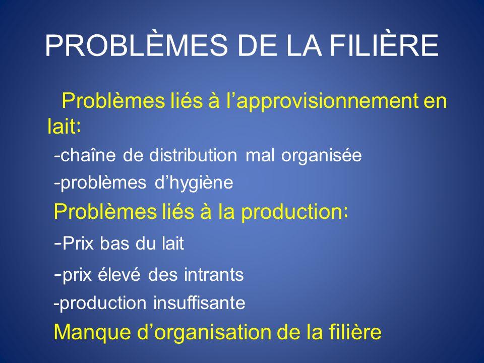 PROBLÈMES DE LA FILIÈRE Problèmes liés à lapprovisionnement en lait : - chaîne de distribution mal organisée - problèmes dhygiène Problèmes liés à la