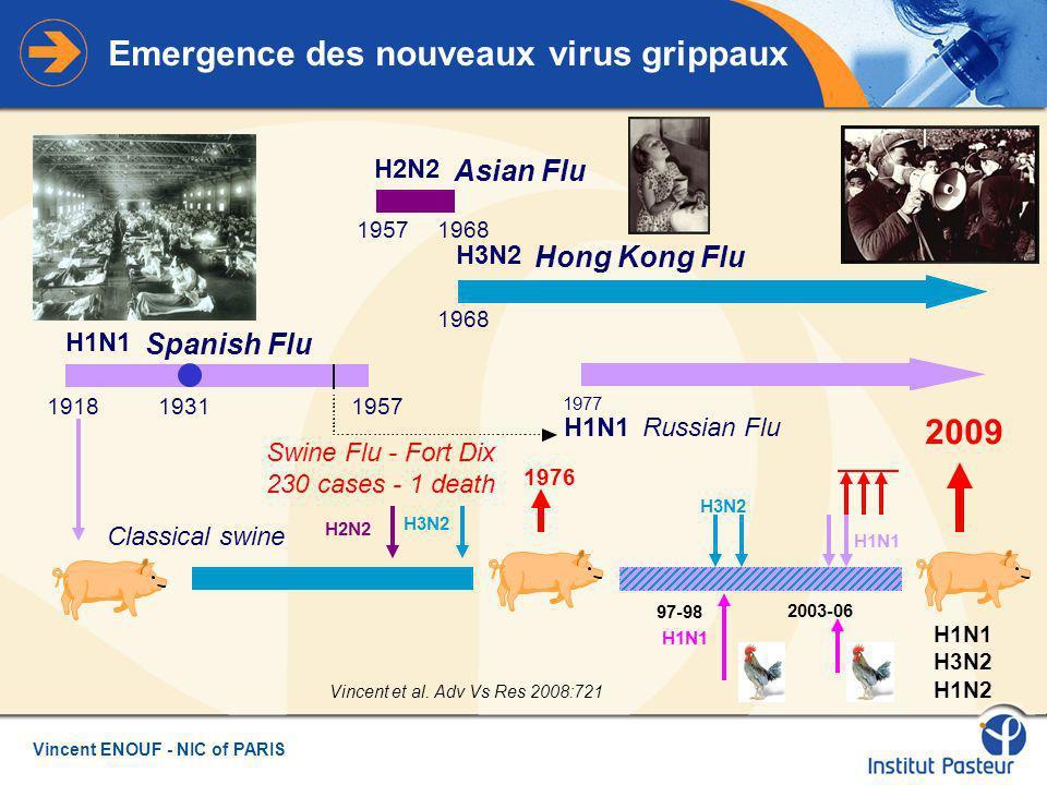 Vincent ENOUF - NIC of PARIS Emergence des nouveaux virus grippaux H1N1 Spanish Flu 19181957 H2N2 Asian Flu 19571968 H3N2 Hong Kong Flu 1968 H1N1 Russian Flu 1977 1931 1976 Swine Flu - Fort Dix 230 cases - 1 death Classical swine 2009 H1N1 H3N2 H1N2 H1N1 97-98 H3N2 H2N2 H3N2 2003-06 Vincent et al.