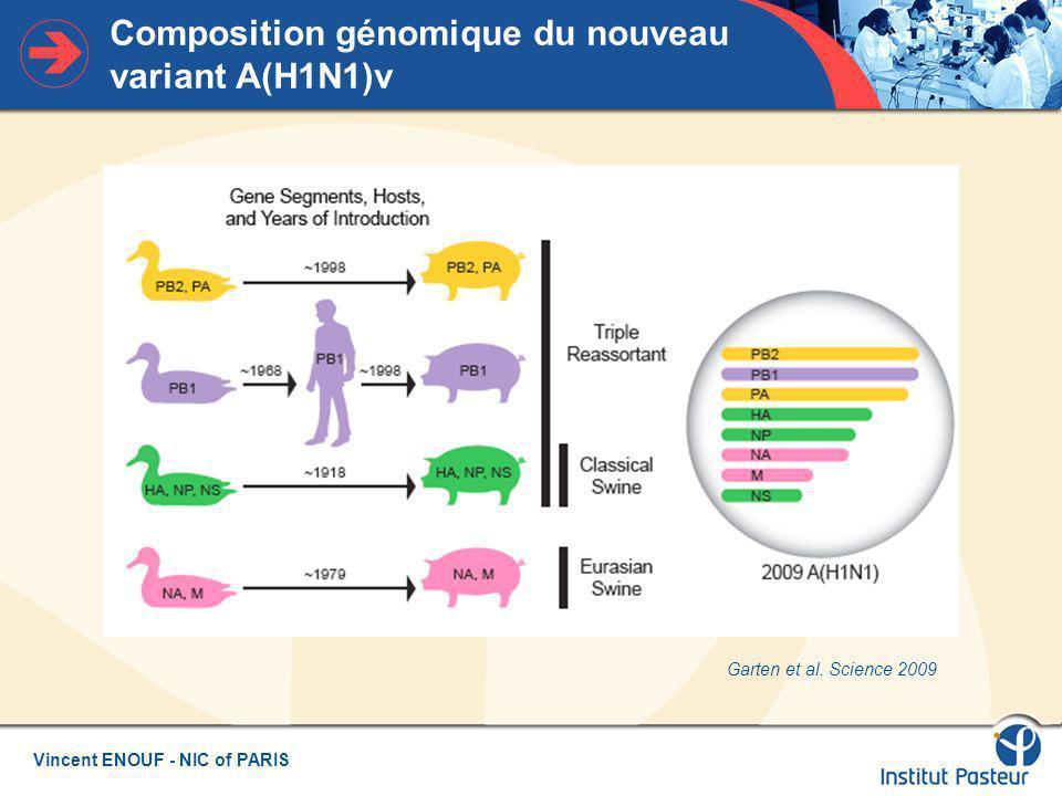 Vincent ENOUF - NIC of PARIS Composition génomique du nouveau variant A(H1N1)v Garten et al.