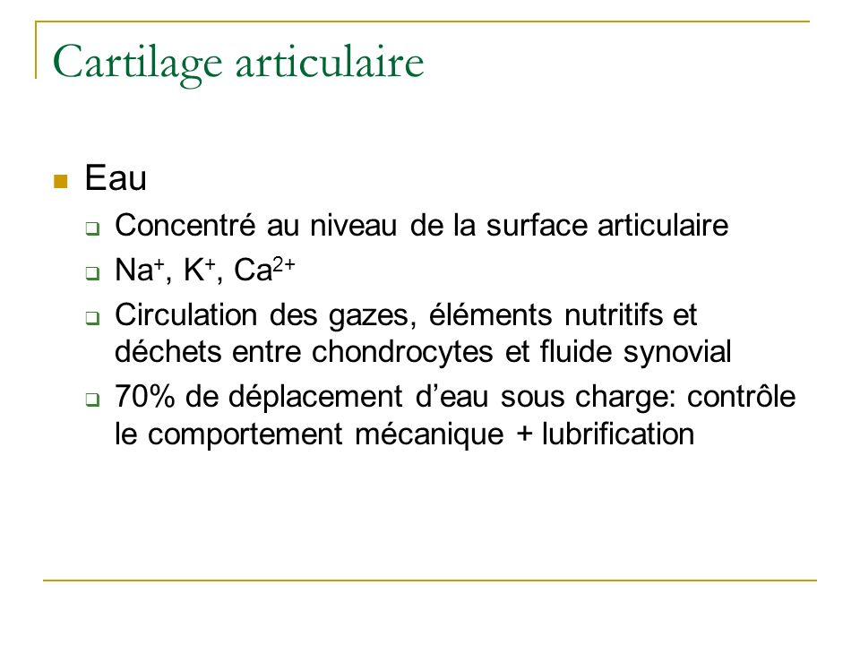 Cartilage articulaire Eau Concentré au niveau de la surface articulaire Na +, K +, Ca 2+ Circulation des gazes, éléments nutritifs et déchets entre ch