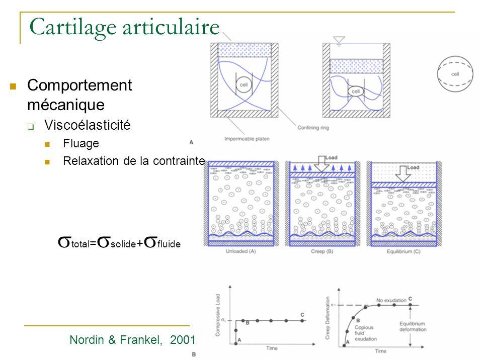 Cartilage articulaire Comportement mécanique Viscoélasticité Fluage Relaxation de la contrainte total = solide + fluide Nordin & Frankel, 2001