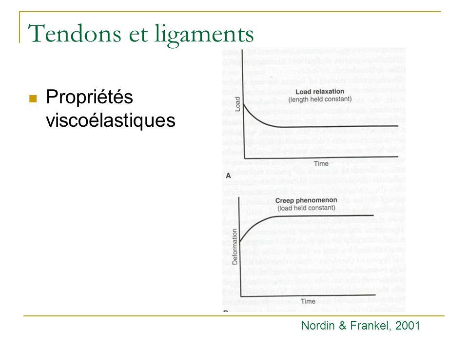 Tendons et ligaments Propriétés viscoélastiques Nordin & Frankel, 2001