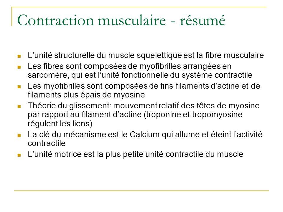 Contraction musculaire - résumé Lunité structurelle du muscle squelettique est la fibre musculaire Les fibres sont composées de myofibrilles arrangées