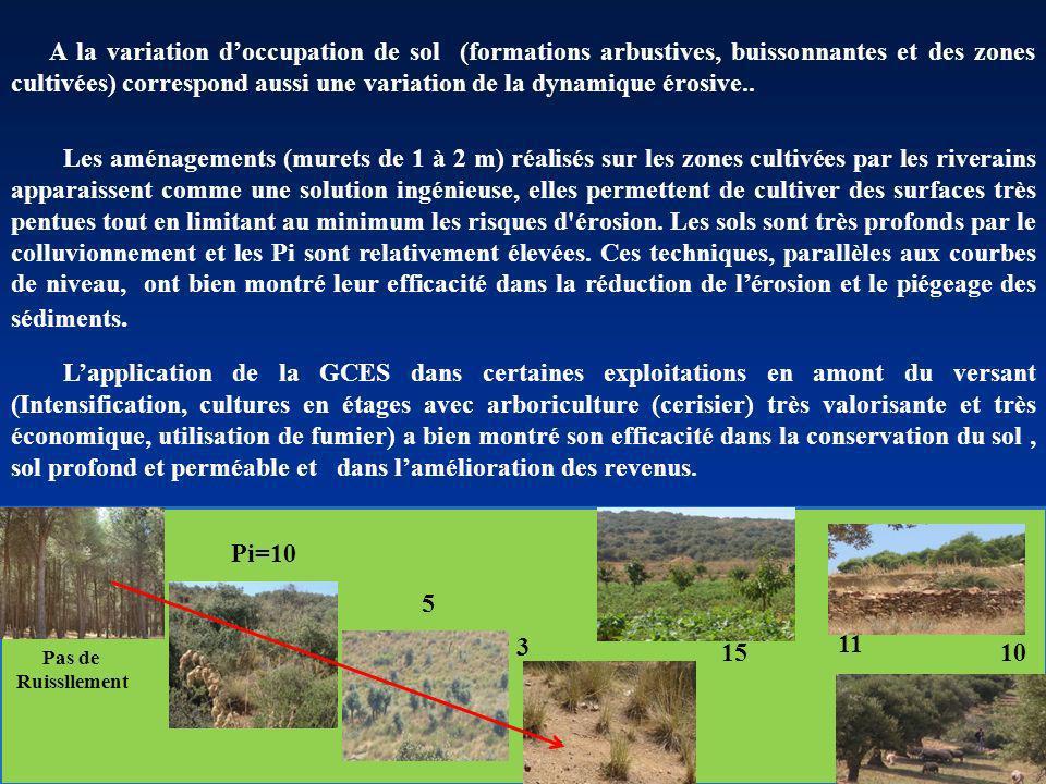 3 Pi=10 15 Pas de Ruissllement 11 5 10 Les aménagements (murets de 1 à 2 m) réalisés sur les zones cultivées par les riverains apparaissent comme une