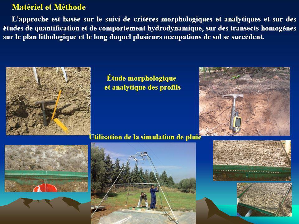 Utilisation de la simulation de pluie Étude morphologique et analytique des profils Matériel et Méthode Lapproche est basée sur le suivi de critères m
