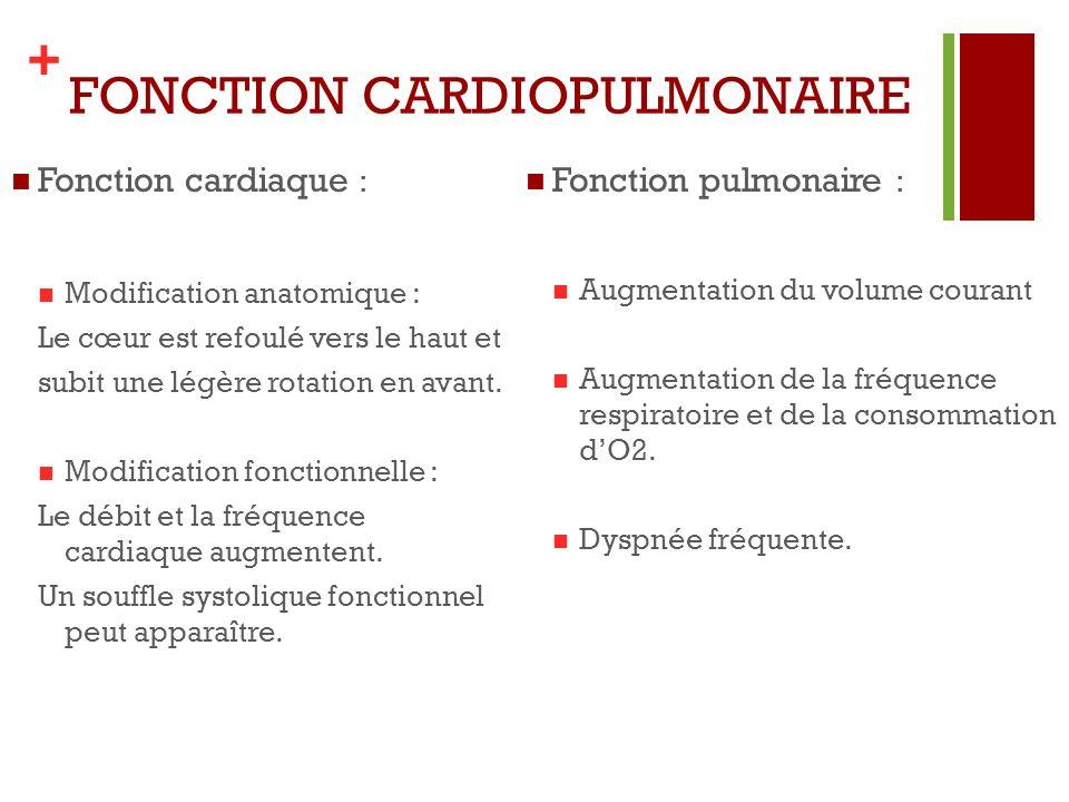 + FONCTION CARDIOPULMONAIRE Fonction cardiaque : Modification anatomique : Le cœur est refoulé vers le haut et subit une légère rotation en avant. Mod