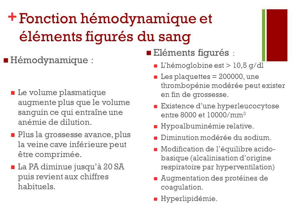+ Fonction hémodynamique et éléments figurés du sang Hémodynamique : Le volume plasmatique augmente plus que le volume sanguin ce qui entraîne une ané