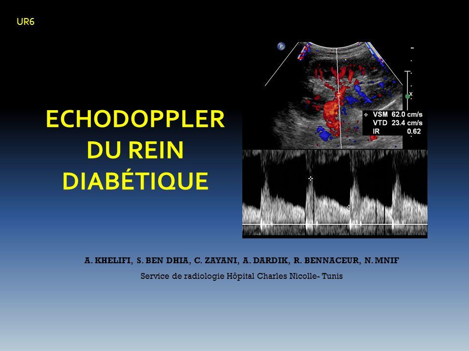 ECHODOPPLER DU REIN DIABÉTIQUE A. KHELIFI, S. BEN DHIA, C. ZAYANI, A. DARDIK, R. BENNACEUR, N. MNIF Service de radiologie Hôpital Charles Nicolle- Tun