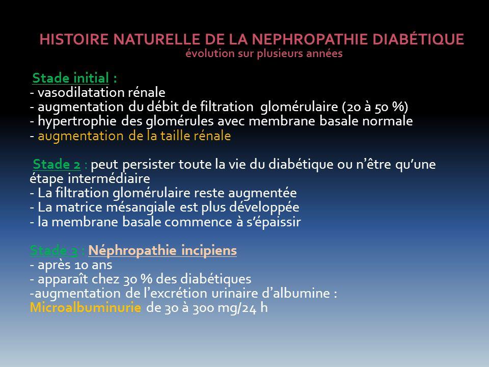 Stade 4 : Néphropathie avérée en 4 à 5 ans sil ny a pas de mesures thérapeutiques, beaucoup plus sinon augmentation du débit dexcrétion dalbumine qui dépasse les 300 mg /24h : macroprotéinurie HTA et atteintes cardiovasculaires surviennent le plus souvent à cette phase lIRC commence à sinstaller avec diminution du DFG et augmentation de la créatinine Il se traduit sur la biopsie par des lésions caractéristiques du diabétique nodules de KIMMELSTIEL WILSON ou glomérulosclérose nodulaire Stade 5 : IRCT La prise en dialyse arrive 3 à 8 ans après le passage au stade de néphropathie avérée Les glomérules sont détruits