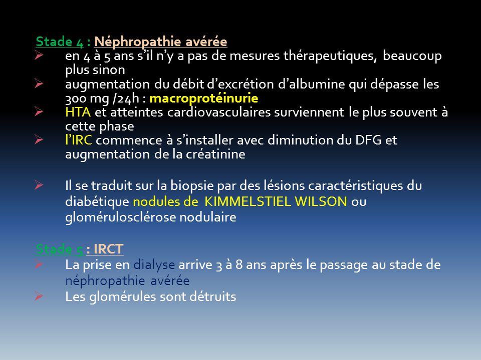 Stade 4 : Néphropathie avérée en 4 à 5 ans sil ny a pas de mesures thérapeutiques, beaucoup plus sinon augmentation du débit dexcrétion dalbumine qui