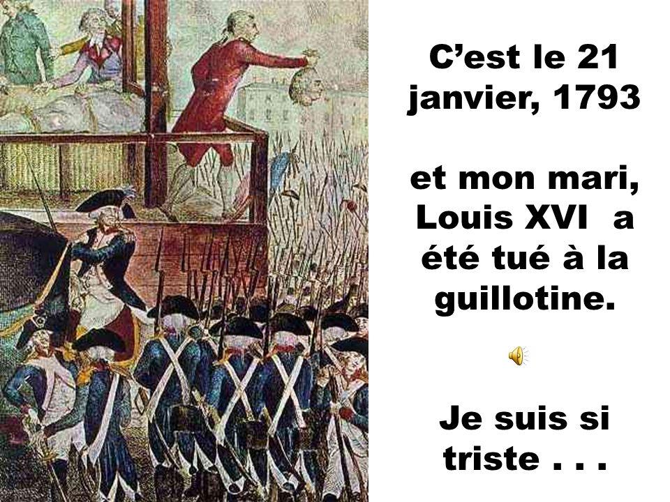 Cest le 14 juillet, 1789, et les gens ordinaires de France enragent contre mon mari et moi. Alors que nous sommes emprisonnés.