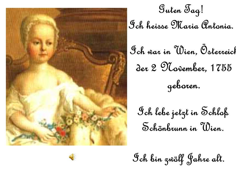 Die Geschichte von Maria Antonia Josepha Joanna von Habsburg- Lotheringen LHistoire de Marie- Antoinette, Reine de la France Picture: School of Martin