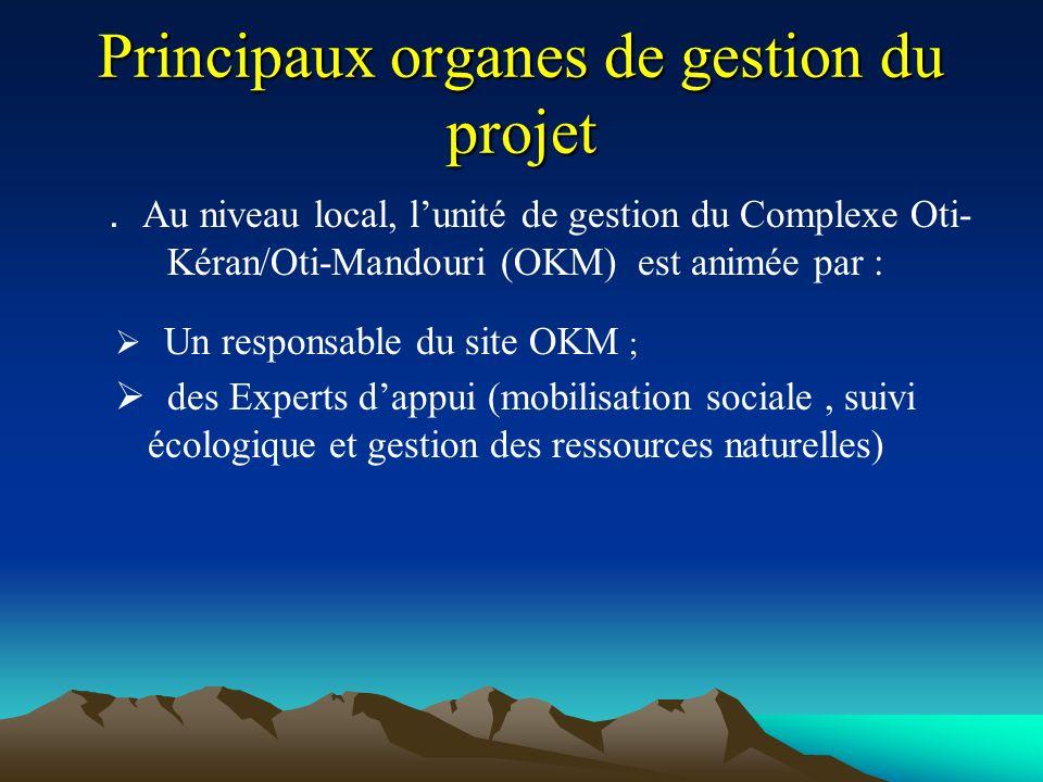 Principaux organes de gestion du projet.