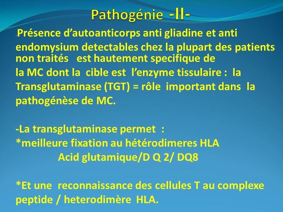 - Présence dautoanticorps anti gliadine et anti endomysium detectables chez la plupart des patients non traités est hautement specifique de la MC dont