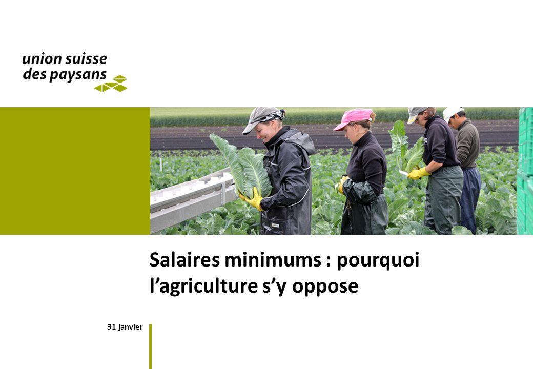 31 janvier Salaires minimums : pourquoi lagriculture sy oppose