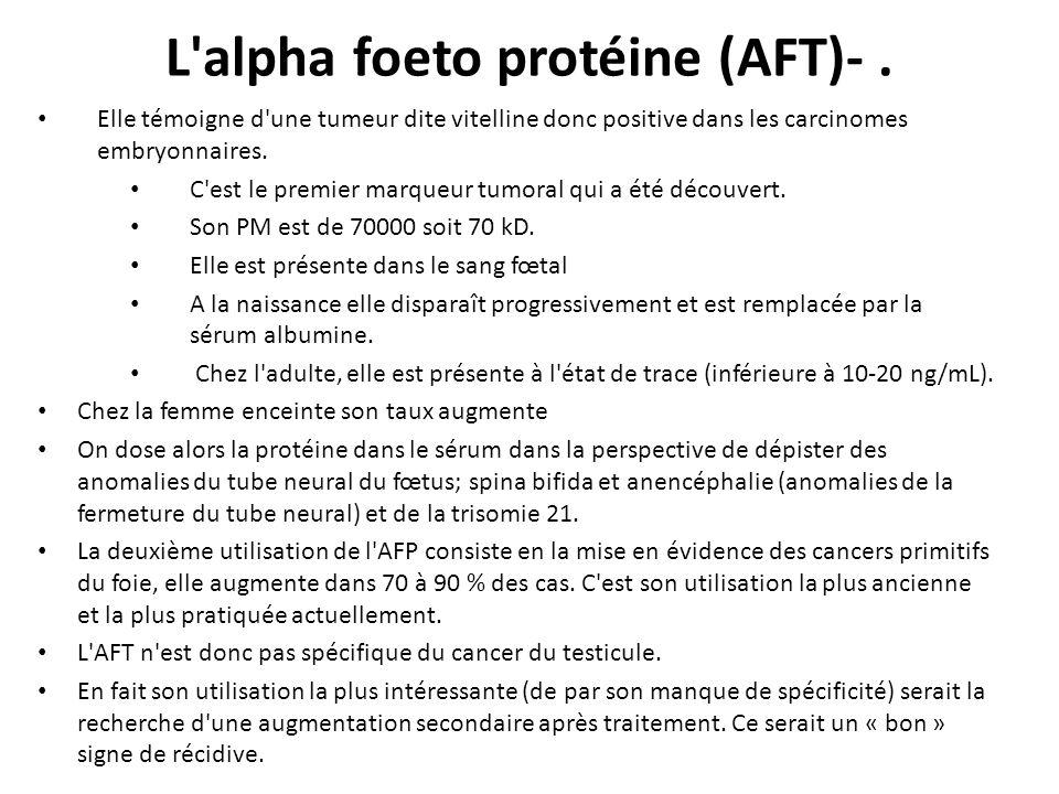 L'alpha foeto protéine (AFT)-. Elle témoigne d'une tumeur dite vitelline donc positive dans les carcinomes embryonnaires. C'est le premier marqueur tu