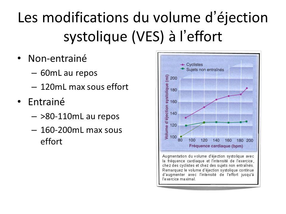 Les modifications du volume d éjection systolique (VES) à l effort Non-entrainé – 60mL au repos – 120mL max sous effort Entrainé – >80-110mL au repos – 160-200mL max sous effort