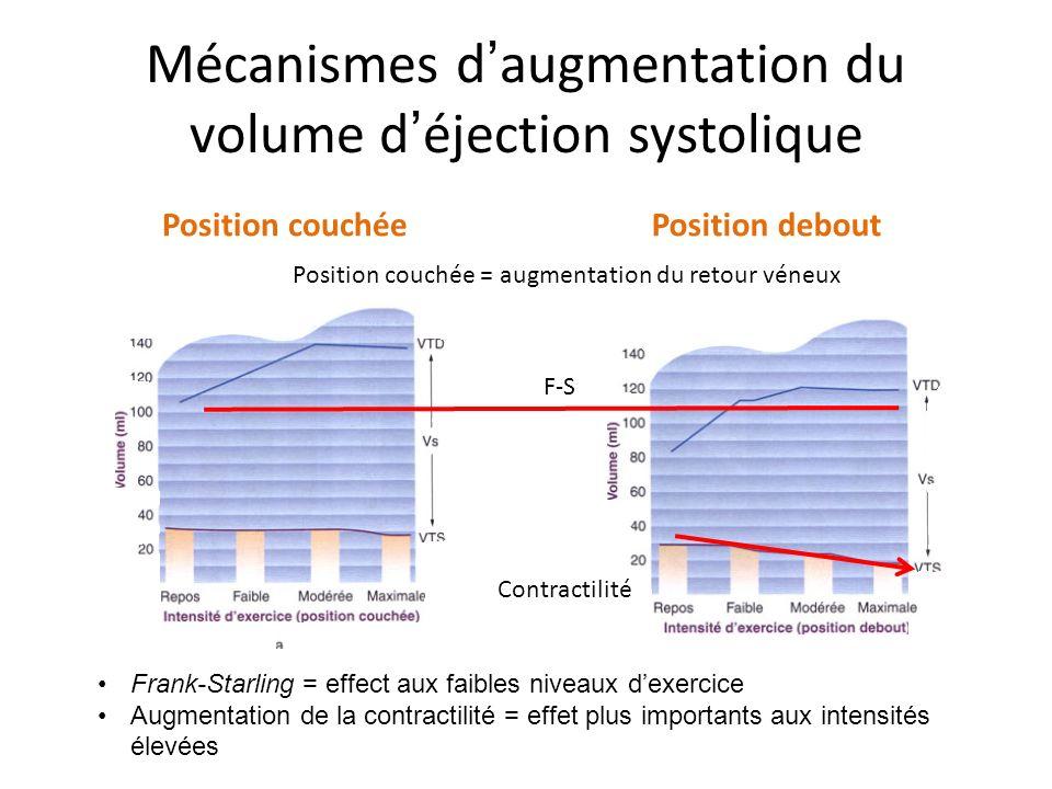 Mécanismes d augmentation du volume d éjection systolique Position couchéePosition debout Position couchée = augmentation du retour véneux F-S Contractilité Frank-Starling = effect aux faibles niveaux dexercice Augmentation de la contractilité = effet plus importants aux intensités élevées