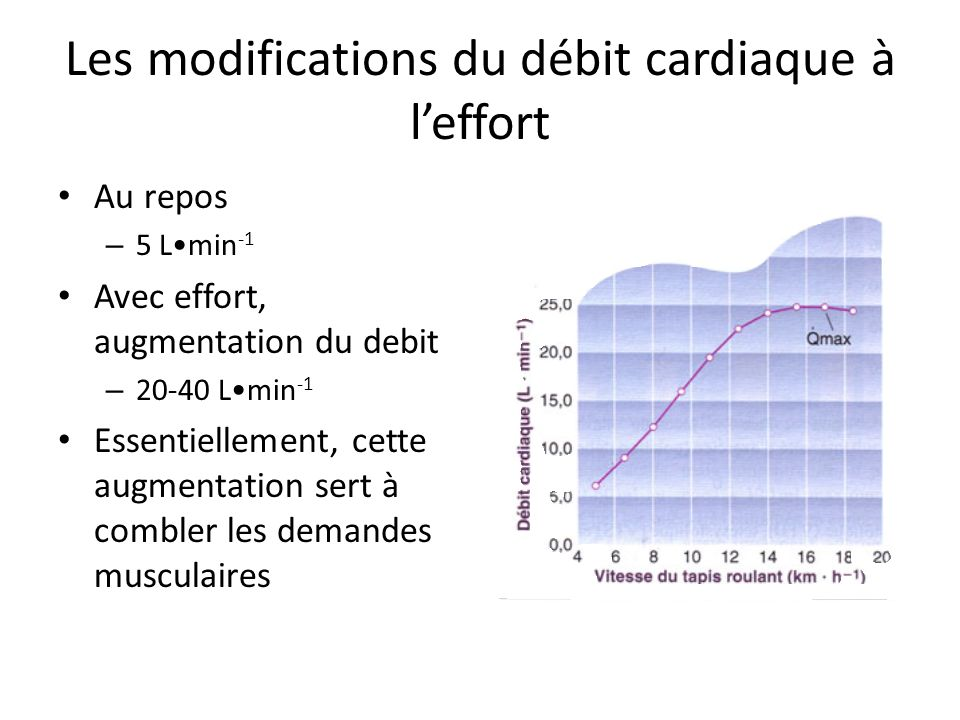 Les modifications du débit cardiaque à leffort Au repos – 5 Lmin -1 Avec effort, augmentation du debit – 20-40 Lmin -1 Essentiellement, cette augmenta