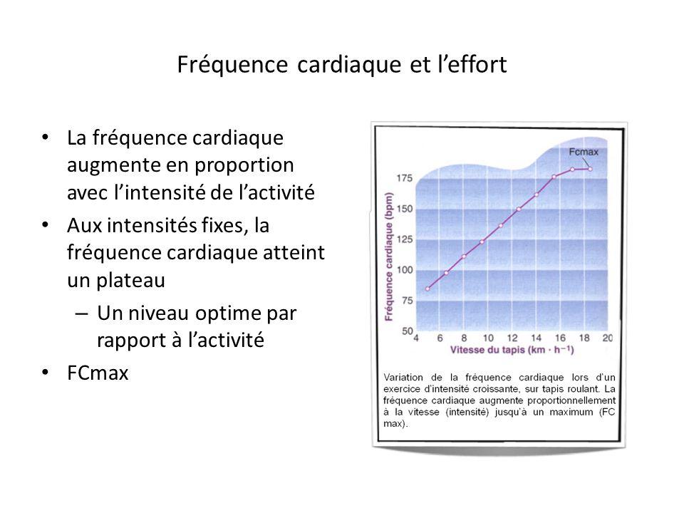 Fréquence cardiaque et leffort La fréquence cardiaque augmente en proportion avec lintensité de lactivité Aux intensités fixes, la fréquence cardiaque