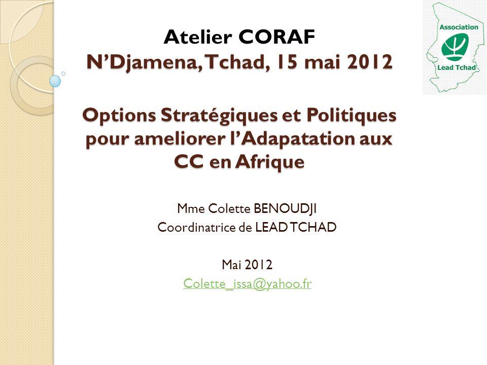 Options Stratégiques et Politiques pour ameliorer lAdapatation aux CC en Afrique Mme Colette BENOUDJI Coordinatrice de LEAD TCHAD Mai 2012 Colette_iss