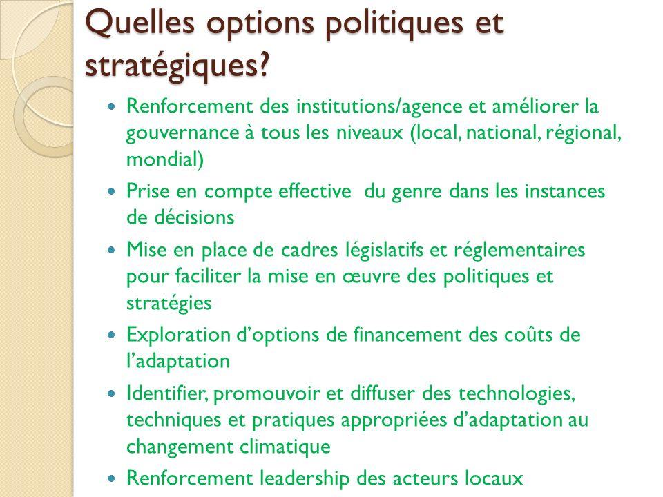 Quelles options politiques et stratégiques? Renforcement des institutions/agence et améliorer la gouvernance à tous les niveaux (local, national, régi