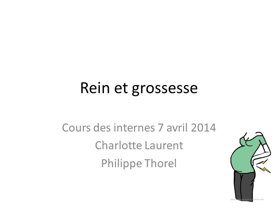 Rein et grossesse Cours des internes 7 avril 2014 Charlotte Laurent Philippe Thorel