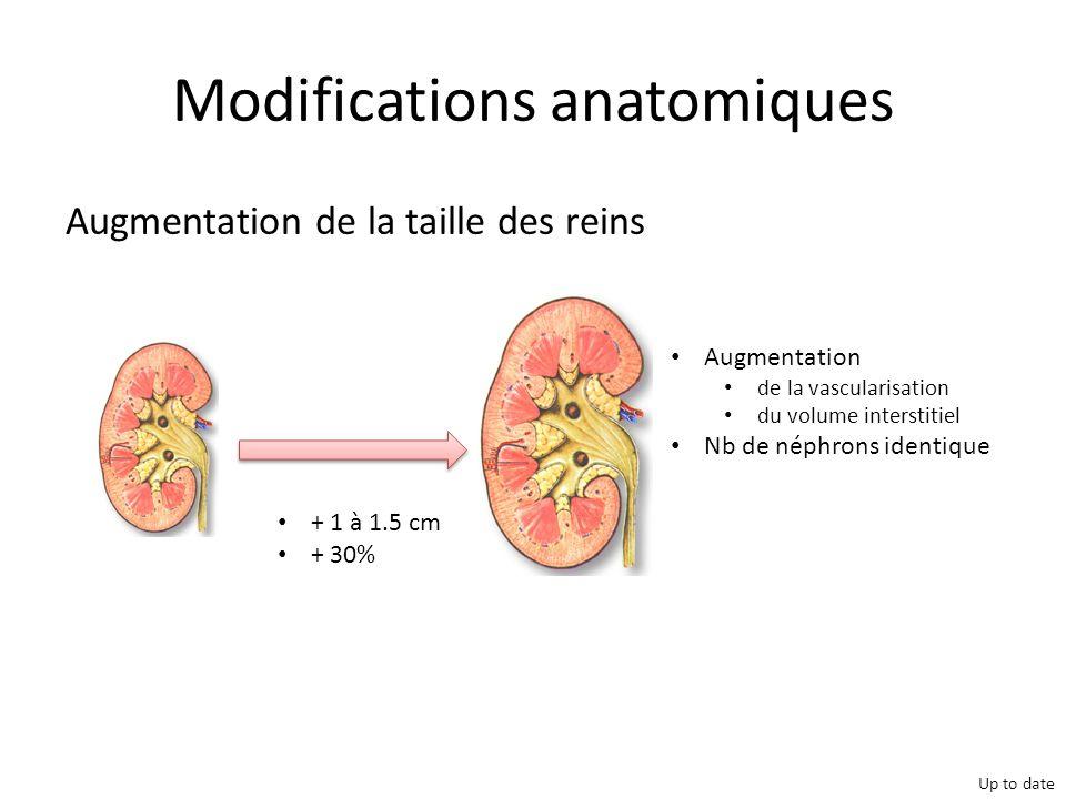 Complications grossesse et TR Deshpande et al. Am J Transplant.2011 Nov;11(11):2388-404.
