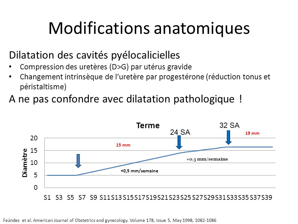 Modifications anatomiques Faúndes et al. American Journal of Obstetrics and gynecology. Volume 178, Issue 5, May 1998, 1082-1086 Dilatation des cavité