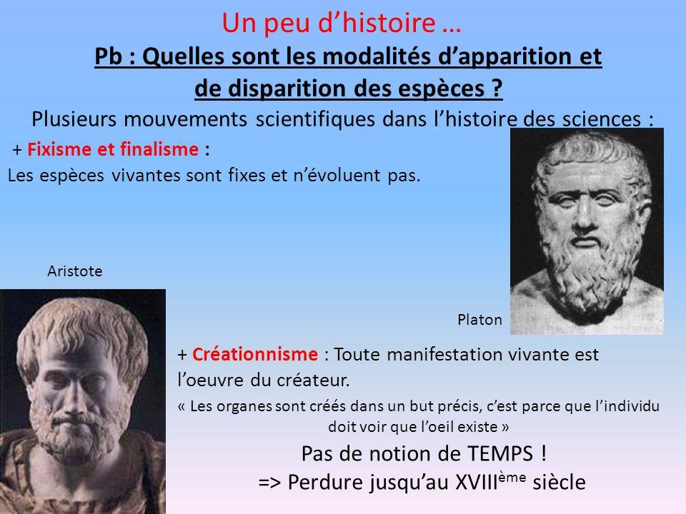 Un peu dhistoire … Pb : Quelles sont les modalités dapparition et de disparition des espèces ? Plusieurs mouvements scientifiques dans lhistoire des s