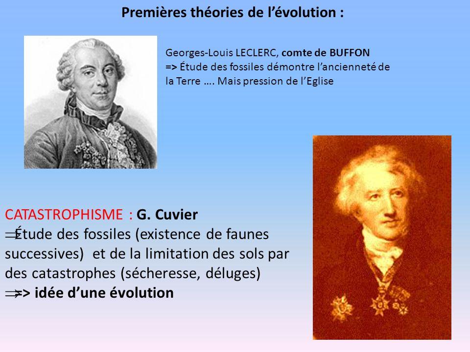 Premières théories de lévolution : Georges-Louis LECLERC, comte de BUFFON => Étude des fossiles démontre lancienneté de la Terre …. Mais pression de l