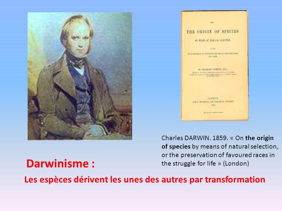 Les espèces dérivent les unes des autres par transformation Charles DARWIN. 1859. « On the origin of species by means of natural selection, or the pre