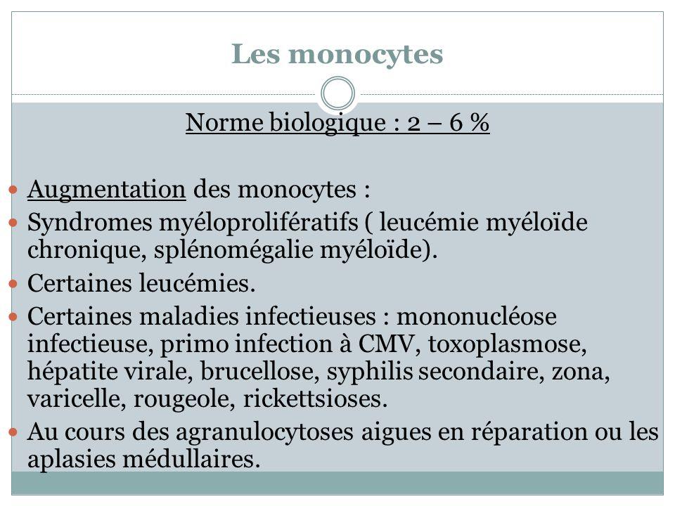 Les monocytes Norme biologique : 2 – 6 % Augmentation des monocytes : Syndromes myéloprolifératifs ( leucémie myéloïde chronique, splénomégalie myéloï
