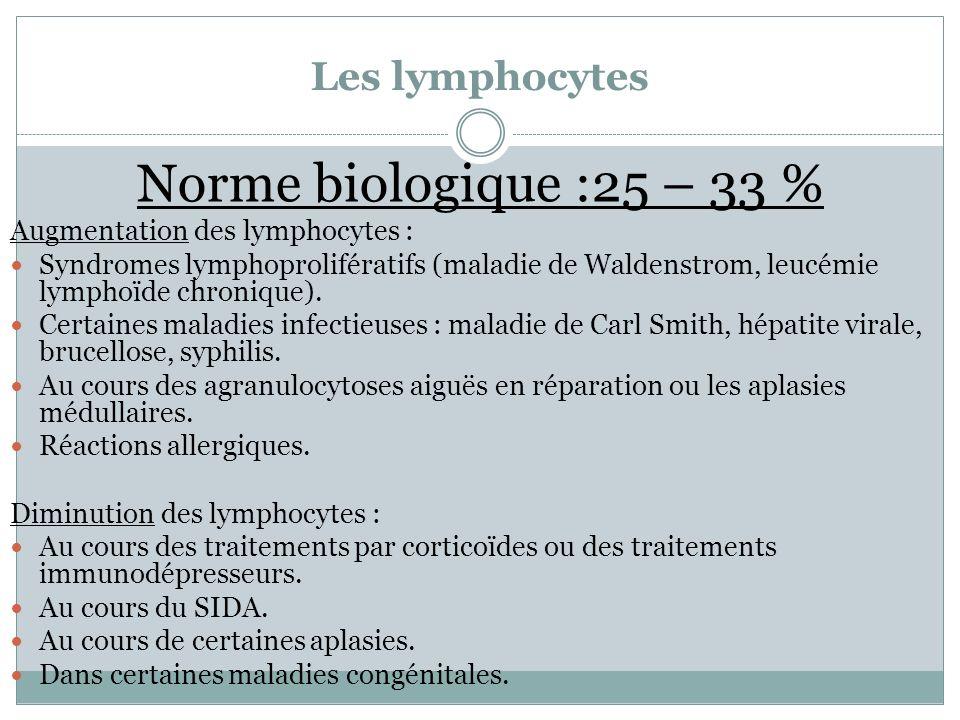 Les lymphocytes Norme biologique :25 – 33 % Augmentation des lymphocytes : Syndromes lymphoprolifératifs (maladie de Waldenstrom, leucémie lymphoïde c