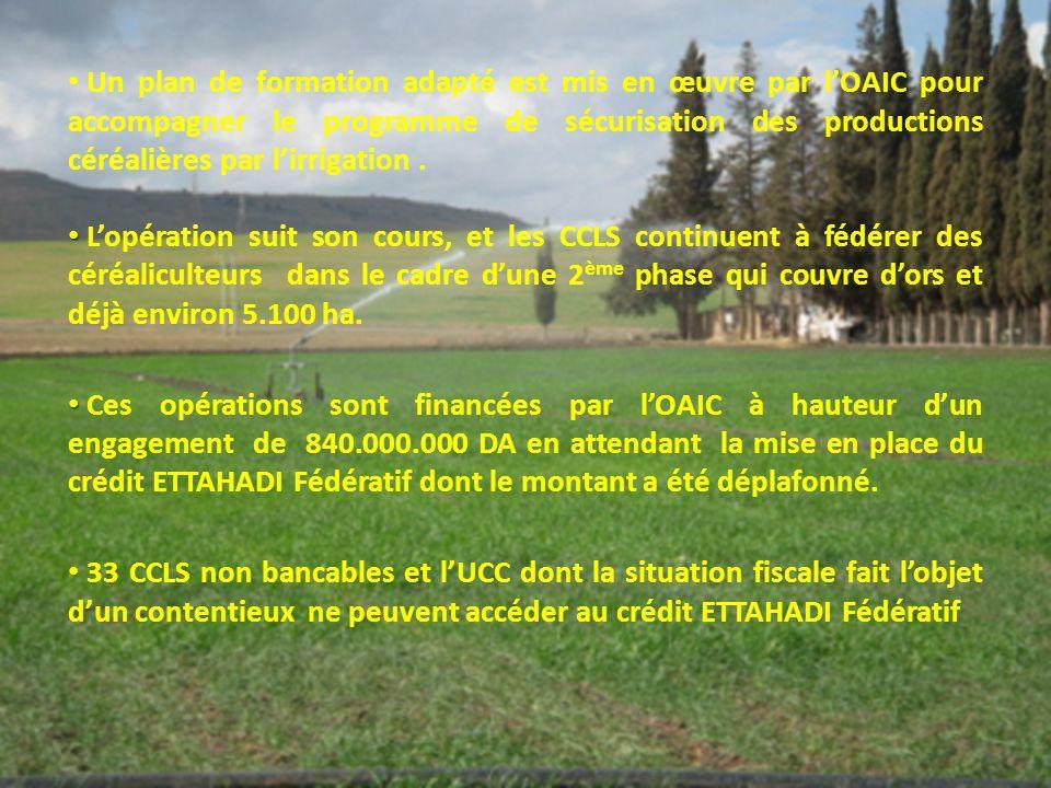 Un plan de formation adapté est mis en œuvre par lOAIC pour accompagner le programme de sécurisation des productions céréalières par lirrigation.