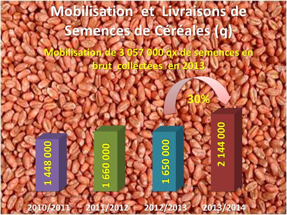 Augmentation des livraisons de 30% en 2013/2014 par rapport à la campagne passée En comparaison avec la campagne 2008/2009 (1 ère campagne concernée par le renouveau agricole) il a été vendu aux céréaliculteurs 3 fois plus de semences réglementaires