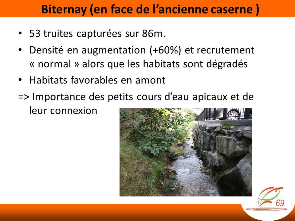 Biternay (en face de lancienne caserne ) 53 truites capturées sur 86m. Densité en augmentation (+60%) et recrutement « normal » alors que les habitats