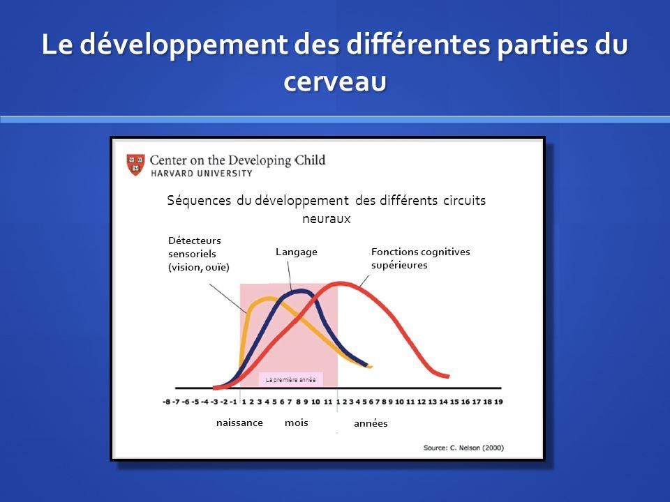 Le développement des différentes parties du cerveau Séquences du développement des différents circuits neuraux Détecteurs sensoriels (vision, ouïe) LangageFonctions cognitives supérieures naissancemois années La première année
