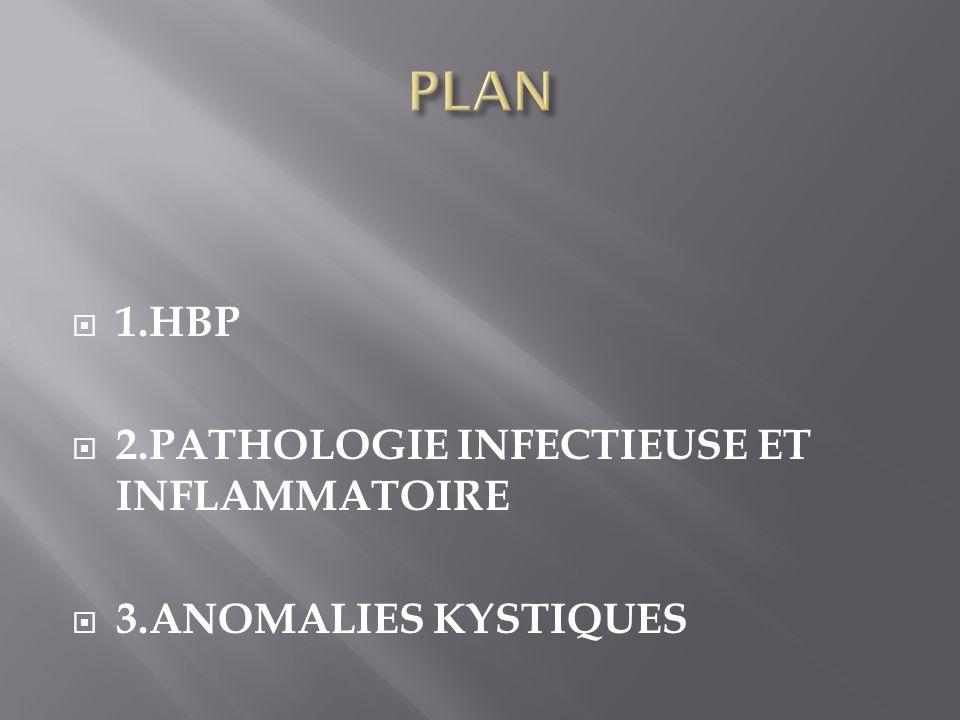 1.HBP 2.PATHOLOGIE INFECTIEUSE ET INFLAMMATOIRE 3.ANOMALIES KYSTIQUES