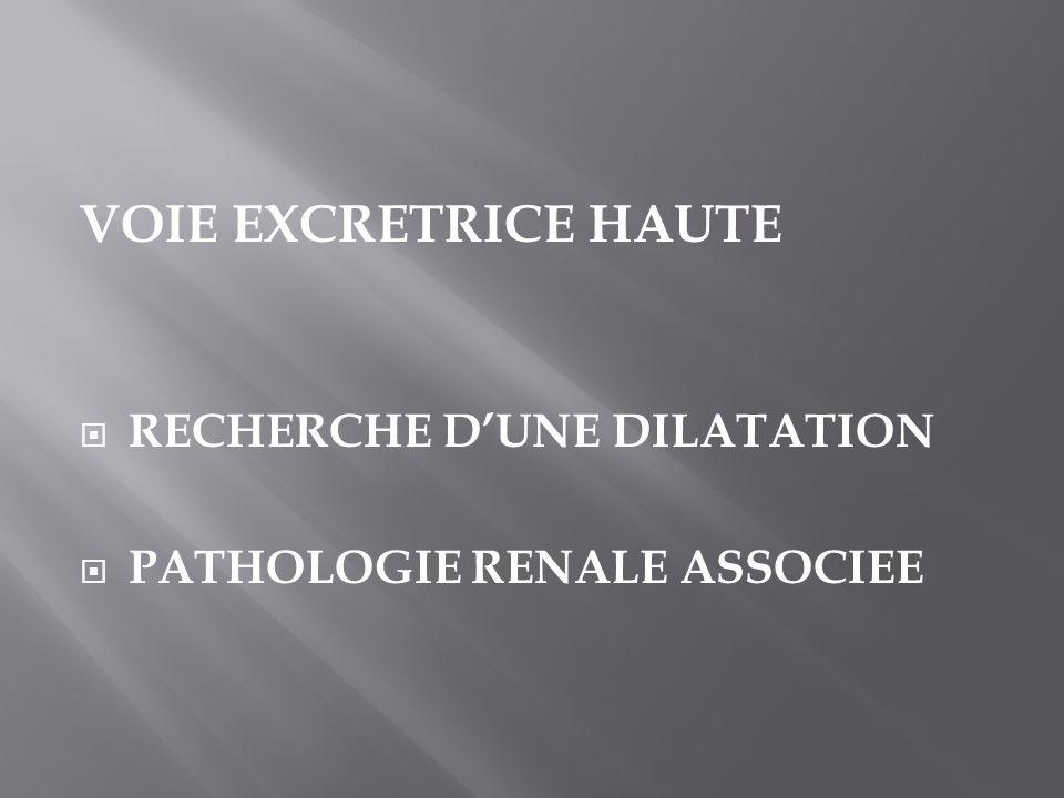 VOIE EXCRETRICE HAUTE RECHERCHE DUNE DILATATION PATHOLOGIE RENALE ASSOCIEE