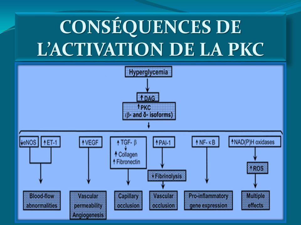 CONSÉQUENCES DE LACTIVATION DE LA PKC
