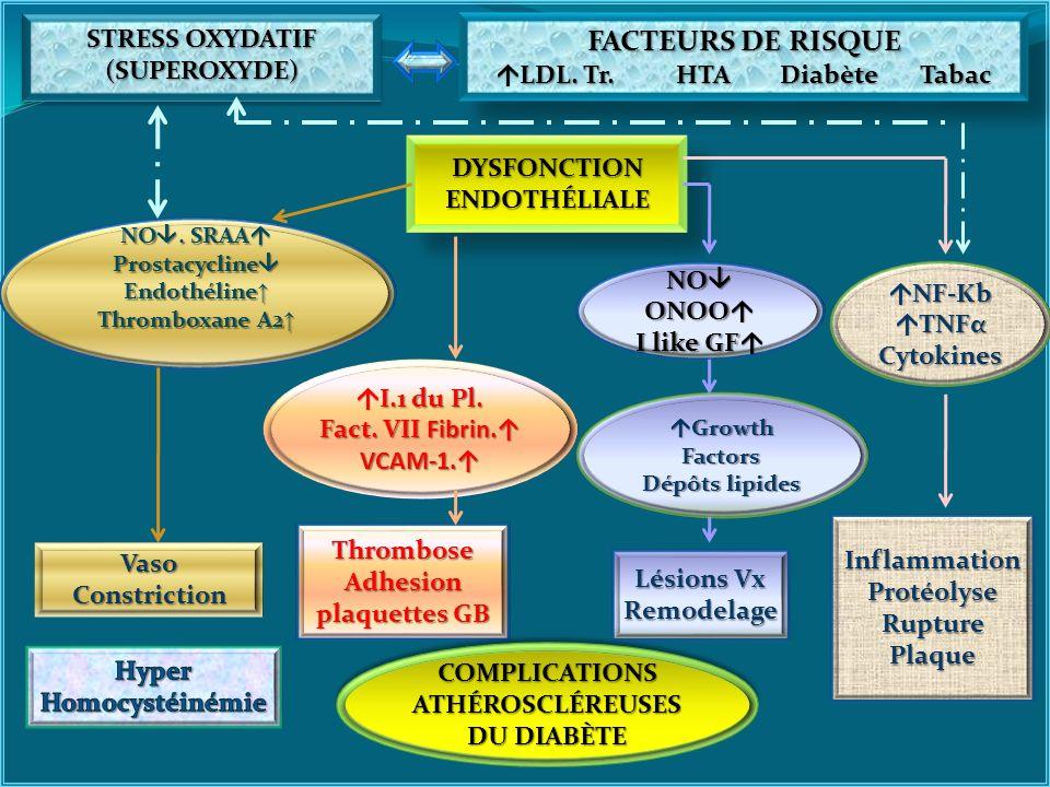 DYSFONCTION ENDOTHÉLIALE STRESS OXYDATIF (SUPEROXYDE) (SUPEROXYDE) FACTEURS DE RISQUE LDL. Tr. HTA Diabète Tabac LDL. Tr. HTA Diabète Tabac FACTEURS D