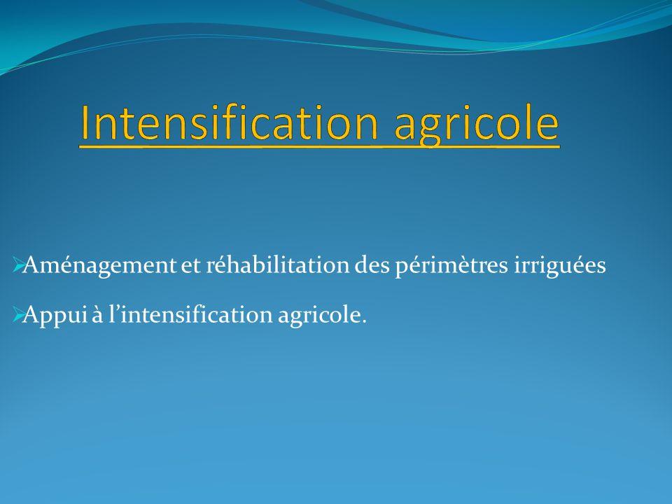 Aménagement et réhabilitation des périmètres irriguées Appui à lintensification agricole.