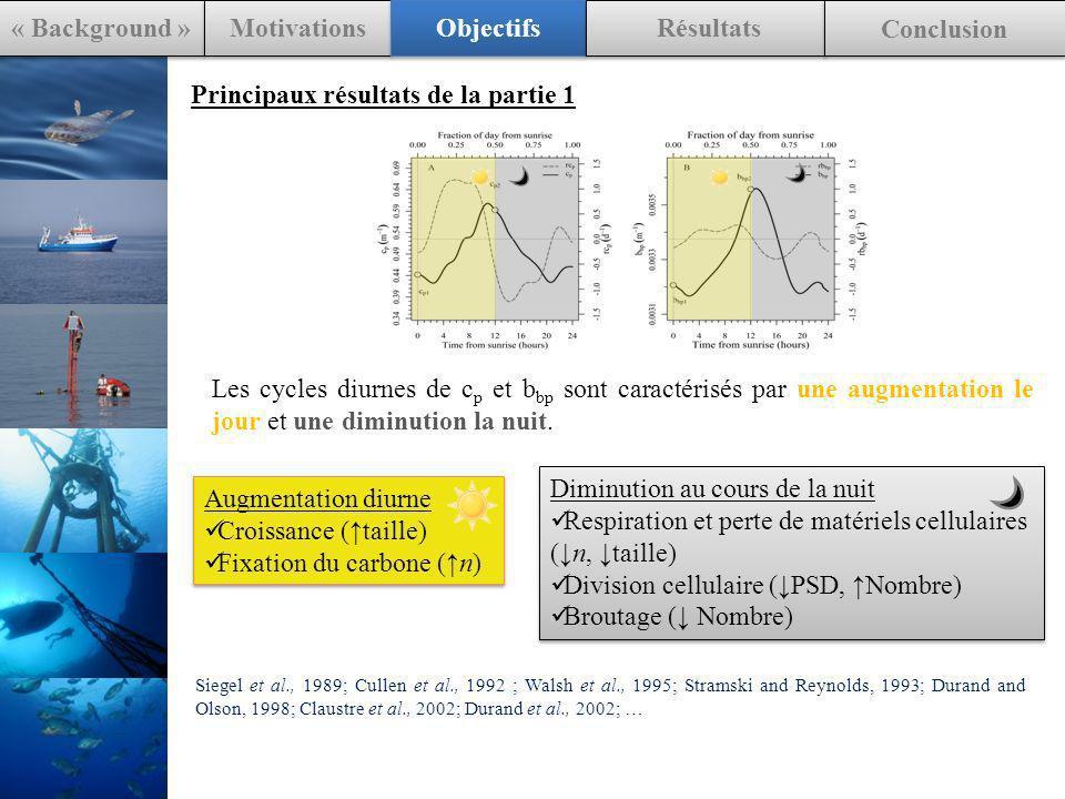 Principaux résultats de la partie 1 Les cycles diurnes de c p et b bp sont caractérisés par une augmentation le jour et une diminution la nuit.