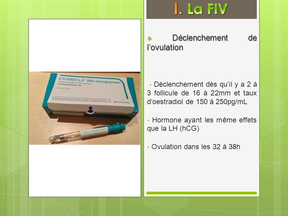 Déclenchement de lovulation Déclenchement de lovulation - Déclenchement dès quil y a 2 à 3 follicule de 16 à 22mm et taux doestradiol de 150 à 250pg/m