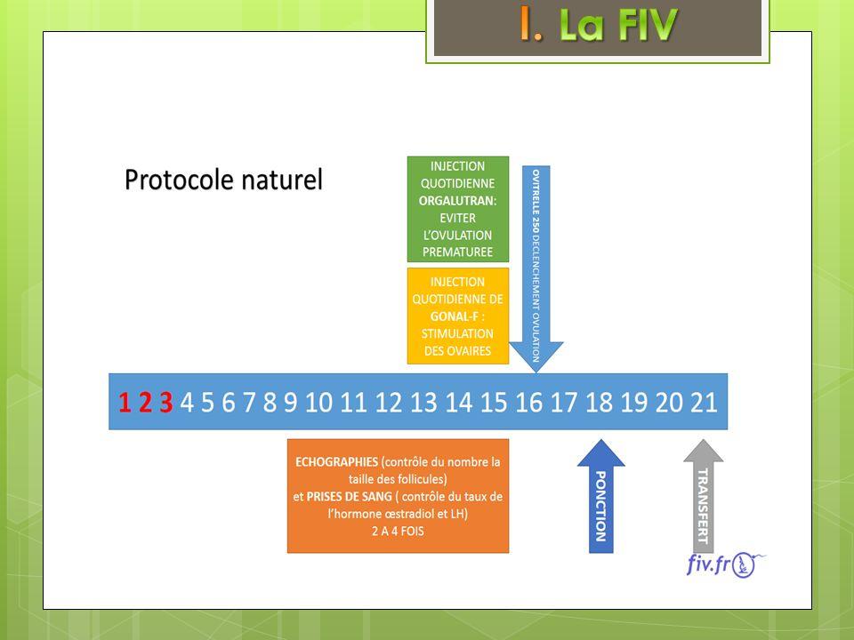 Décomposé en 3 grandes parties: Une phase de blocageUne phase de blocage - mettre au repos lhypophyse afin de mettre au repos les ovaires - bilan hormonal de base et échographie pour estimer le nombre de follicules de départ
