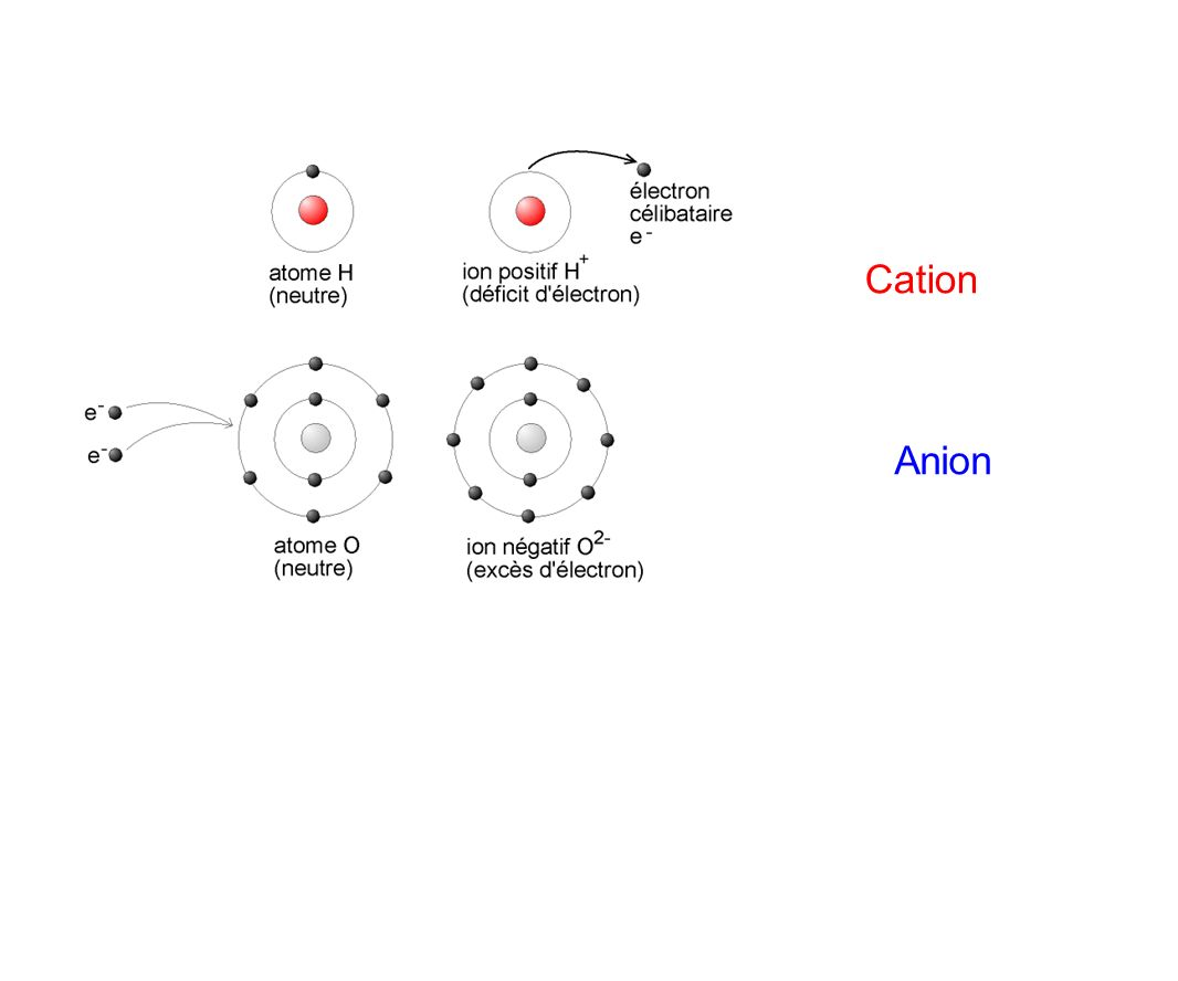 Cation Anion